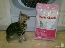 Лечебные корма Royal Canin